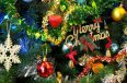 1-the-christmas-tree-1081320_1920-2-X.jpg